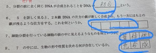 青でまるつけてるとこの答えお願いします。