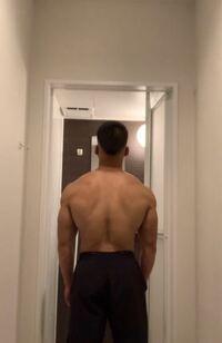 脱力してる状態ですがこのくらいなら側から見ても背中の筋肉あるように見えますか?