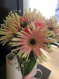誕生日に花束をもらいました。 この花は何という花なのですか? わかる方教えてください