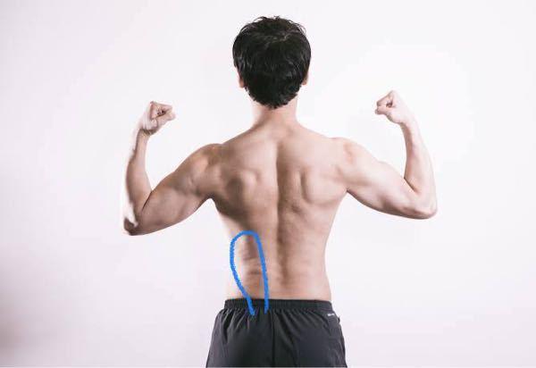 19歳男です。 背中の腰と背中の間のあたりの左側のところが重いようなだるいような違和感があります。たまにあるのですが、数日経てば治るのですが調べてみると膵臓がんの症状でそのようなものがあるとでて...