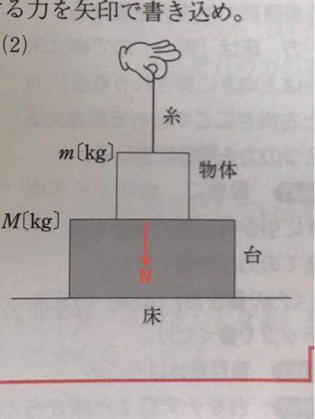 物理で質問です 写真のように、 糸で引っ張っている時、台は物体からNの力を受けますが、 糸で引っ張っていない時、台はmgの力を受けるという解釈で合ってますか?