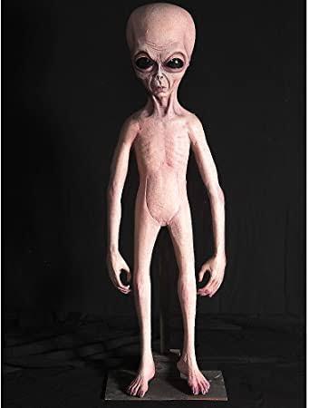宇宙人グレイです。どうしたら腕と足が太くなりますか。太くなる習慣を教えてください。ガリガリなので他の宇宙人に舐められて腹が立ちます。