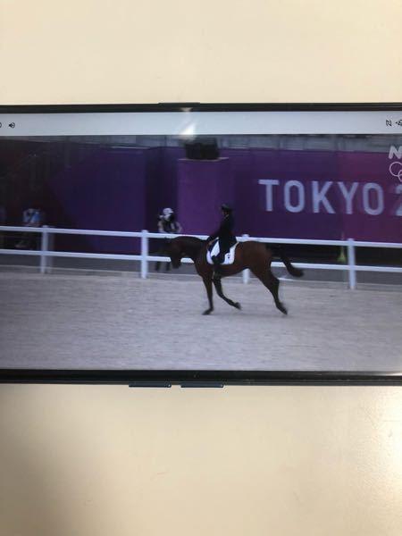 馬場馬術は外の砂の時点で審査されますか?