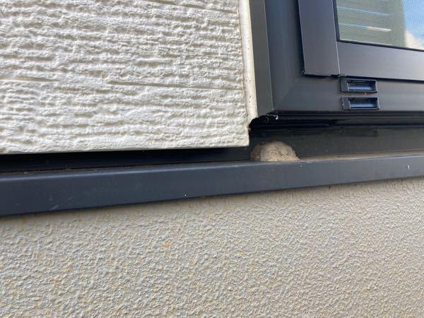 これは蜂の巣ですか? なんの蜂かわかりますか。 窓の下に巣みたいなのがあったのですが、黒くて大きいハチがとまっていました。