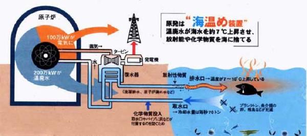 地球温暖化装置の原発は、子どもたちも癌だらけにする最悪な発電方法なのでは? 放射性トリチウム熱排水で海も熱して海洋に溶存している二酸化炭素もメタンガスも大気へ大量放出。