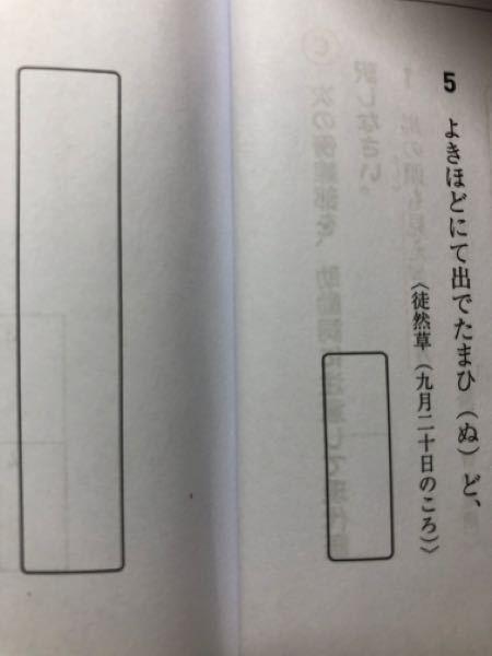 五番の問題ですが、()の助動詞を適切な形に直す問題です。この場合どのようにして答えにたどり着くのですか?
