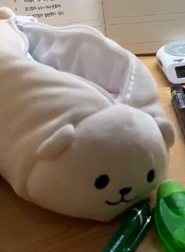 韓国の高校生がよく使ってるイメージなのですがこんな感じのペンケースはどこに売ってますか?IKEAで売ってる動物のとかではなく綿が多く入っててもちもちした感じのです。Googleなどで「韓国 ペン...