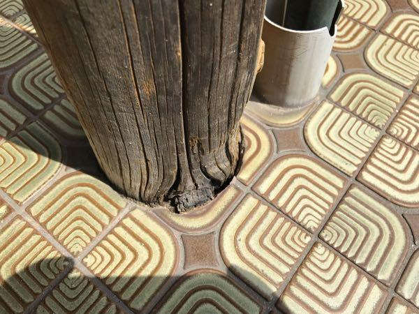 玄関の軒を支えている柱の根ともです。 タイル張りのコンクリートに立っていますが、画像のように柱が痩せて隙間ができています。 根元を叩くと「コーン!」と音が響くので、腐ってはいないようです。グラつきもありません。 この柱を保護するために防腐剤などをが流し込んで、パテがコーキングで隙間を塞ごうと思うのですが、どのような防腐剤が良いでしょう? 作業手順は、防腐剤を流し込んで、透明のコーキングで覆うような感じで大丈夫でしょうか? お詳しい方にご回答いただけると有り難いです。よろしくお願いいたします。