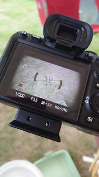 Sony a7S IIIにsel30m35のレンズをつけて動画を撮影したところ画像のように外側に黒い影が移ります。フードをとっても消えません。こういうものなのでしょうか?