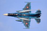 皆さんは双発戦闘機と単発戦闘機 どちらが好きですか?