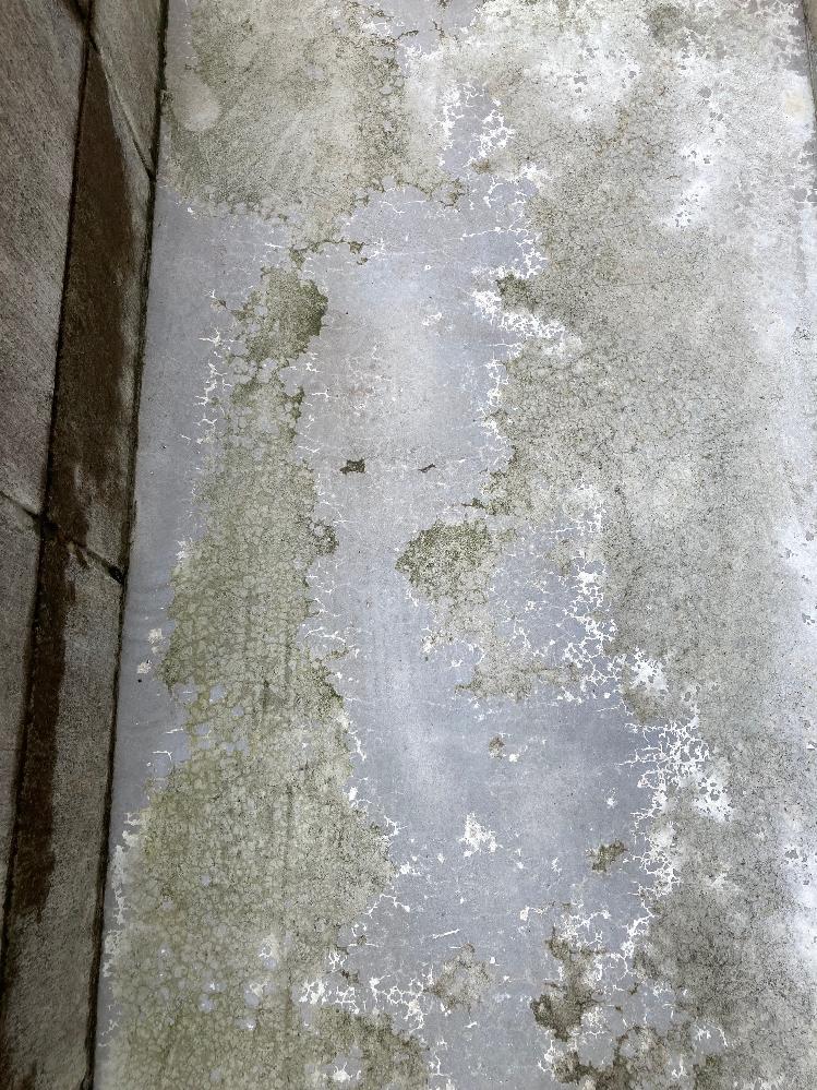 コンクリートを施工する業者さんに質問です。 約1年前に一戸建ての庭に業者にお願いしてコンクリートを打ってもらいました。 最初からまだら模様が目立ち、業者に確認するも「いずれ落ち着いてくる」と言われそのままにしていましたが、まだら模様に加えて小さいクラックのようなものも気になってきました。 添付の画像のような感じですが、これは普通(異常ではない)でしょうか? (緑色のコケは気にしてないです。) 普段からコンクリートの上に自転車やその他のものは置いていません。 施工は昨年8月にミキサー車を横付けして流し込んでました。 そもそも専門業者ではなく「なんでもやります(やったことはあります)」みたいな業者だったのであとから思い返すと作業の進め方などモヤモヤすることが多々あり、プロの方の判断と知恵をお借りしたく質問しました。