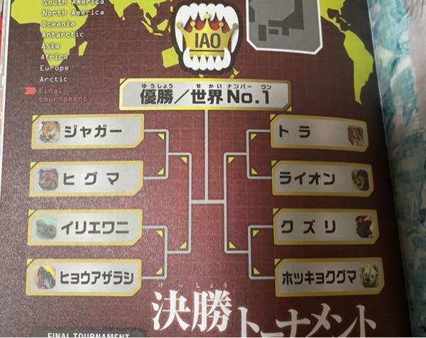 ジャガーvsヒグマ イリエワニvsヒョウアザラシ トラvsライオン クズリvsホッキョクグマ それぞれどちらが勝つと思いますか? また、優勝するのはどれだと思いますか?