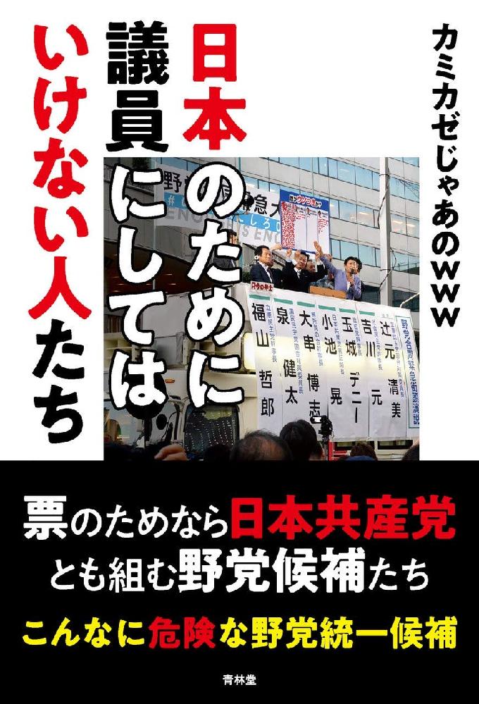 私の感覚では、日本の国政で現与党勢力よりマシなことができそうな有力勢力は当分の間現れそうにありません。これと近い感覚を持つ人たちの中には、日本共産党が政権を担当することを特に嫌う人が多いです。 現与党勢力の中の公明党を特に嫌いな人も多いですが、「公明党は自由民主党が顔を立ててやりながら使っているだけだからほとんど影響は無い」とあまり気にしていないようです。私は、日本共産党の社民党と同じような国防意識の薄さに対するものを除けばそれほど持っていませんが、政権交代に関しての感覚が私に近い人たちの多くが抱く日本共産党への恐怖感の具体例には主に何があるのですか?
