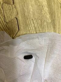 この黒い物体が時々キッチンの引き出しの中や足元に落ちていることがあるのですが何かの虫とかフンなどでしょうか?