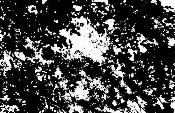【250コイン】【至急】 この画像の白と黒の部分の割合をお願いします!