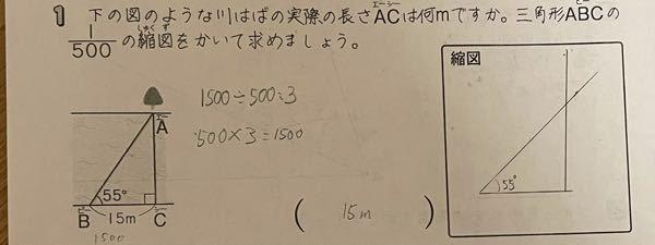 小学六年生の勉強です。 この縮図の問題の答えは合ってますか?