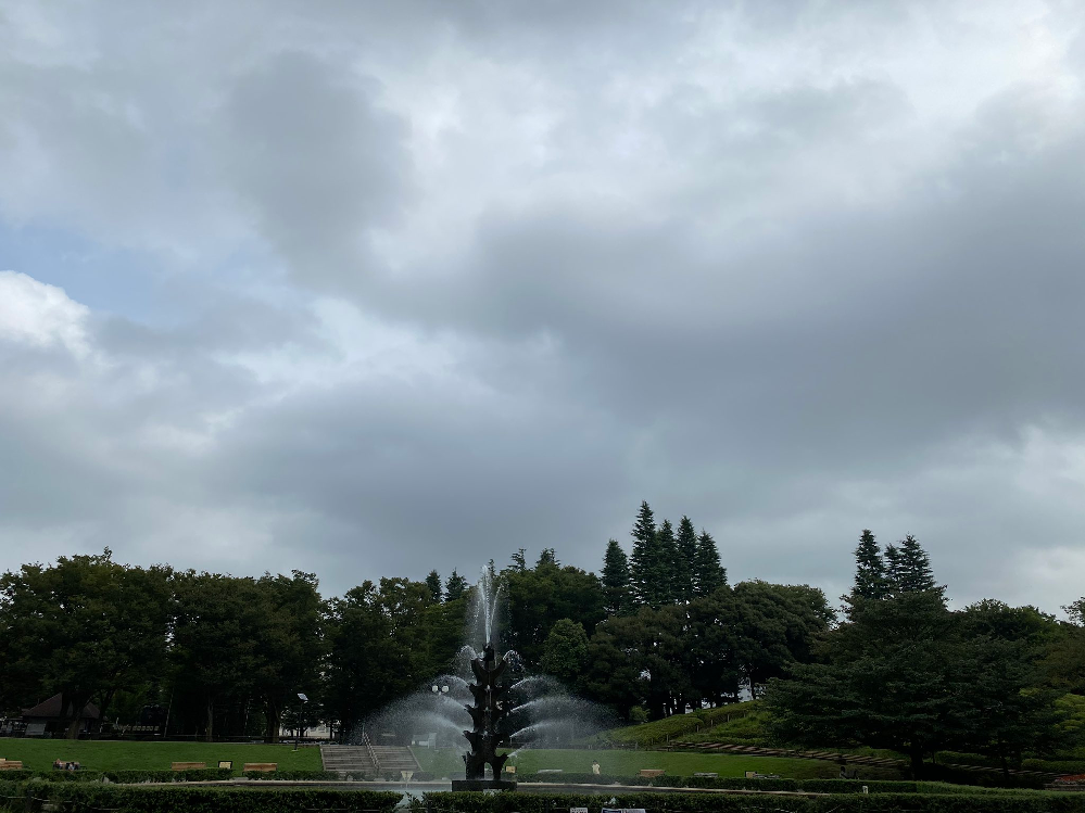 至急で知りたいです。 この公園はどこか分かりますか? 東京都内です。