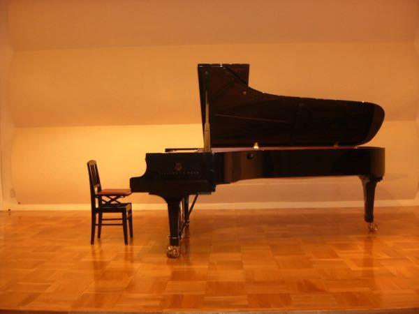 ピアノは楽器の王様だと思ってました。うちは高校生なのと、賃貸マンションだからヤマハの電子ピアノを使ってますが、スタインウェイのD274フルコンサートは憧れで、楽器の王座の風格を感じるのですが、ピアノは楽器 の女王となってるようです。 ピアノが楽器の女王で、まだ上があるのなら楽器の王座に君臨するのは何ですか?