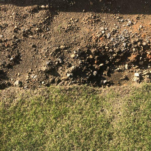 芝生に詳しい方、お願いいたしますm(_ _)m 庭の芝生を広げたいのですが、土床はどのようにすればいいですか? 出来るだけフラットにしたいのですが、土を敷いた後はしばらく雨ざらしにして土が沈むのを待った方がいいのですか? 直ぐに芝生を貼ったら凹凸になりますかね? 芝生の土床の作り方と転圧の仕方を教えて下さい よろしくお願いいたしますm(_ _)m