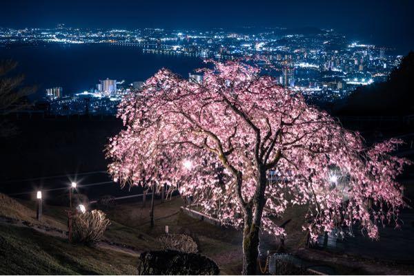 滋賀のどこの場所かわかりますか??