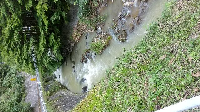 アマゴ狙いの初心者です。ダム湖の上流と下流で釣りをしています。 ダム湖の上流は濁りなく釣果はそこそこですが、下流域は8月の豪雨の影響で1ヶ月以上たちますが、ご覧の通りです。 このような濁りでは釣りにならないのでしょうか。 釣ってみればよいのですが、ムダ足のような気がしています。 ちなみにエサ釣りです。