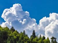 この雲,積乱雲ですか?