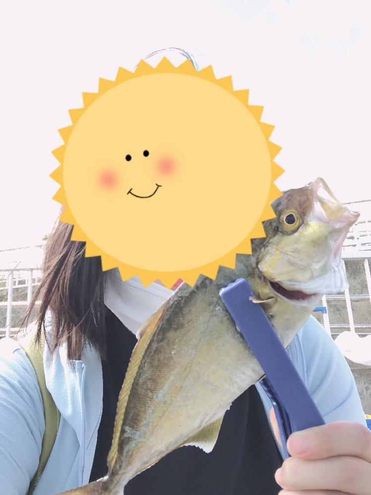 この魚はなんですか?? シラサエビで釣れたのですがどのような調理法がオススメでしょうか? 回答よろしくお願い致します♪