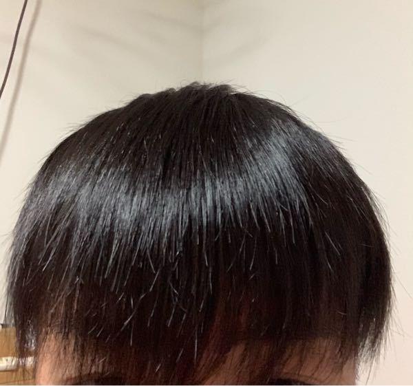高校3年生です。 前髪サイドが髪が薄く前から見ると髪がVの字になってしまいます。またサイドのとこだけ髪が薄いのでそこだけ潰れてしまいます。 (画像外ですが前髪は1番長いところで目の涙袋ぐらいまであります) マッシュにしたく結構髪を伸ばしているのですが前髪サイドだけ短くてとても困っていますどうすればいいのですか??時間が経てば治りますかね? ご回答お願いしますm(_ _)m ブラシした後なので髪が潰れてます