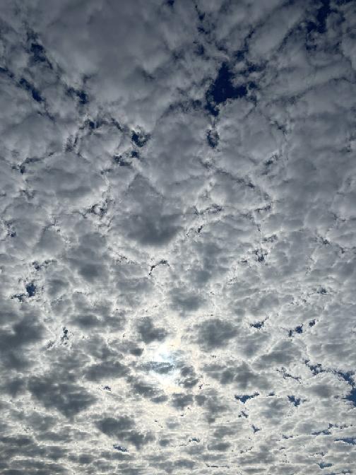 これなんていう雲ですか?