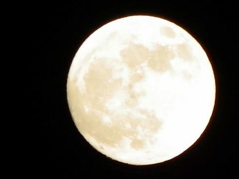 昨日は十五夜でしたね、 十五夜って、真ん丸のキレイな満月の事ですよね? 十五夜以外は実は所々欠けてるので 本当の満月ではないと言われています。 でも、それってそれだけ太陽と地球と月が 一直線になってるという事ですよね、 だったらなぜ月食にならないんですか? 一直線になったら月食になっちゃうから、 十五夜も一直線ではないから 本当は少し欠けてるという事?