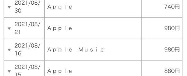 来月の携帯料金の請求なんですけどApple Musicは分かるんですけどその他のAppleってなんですかね解約とかってできますかね?