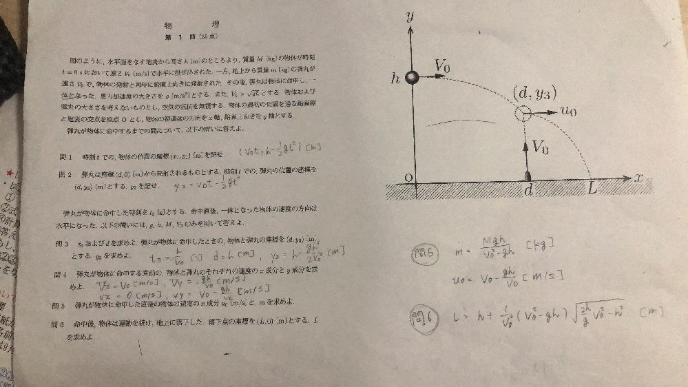 物理力学の範囲の問題です。写真の問題の問5、問6の解き方がわかりません。回答はあるのですが答えだけで困っています。教えていただきたいです。お願いします。