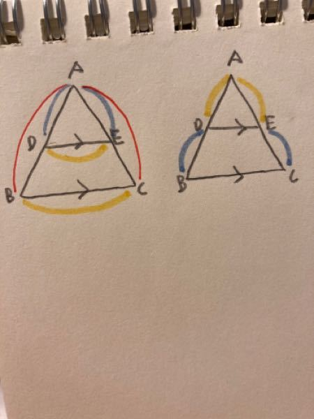 中3の数学の問題です! 平行線と線分の比率についてなんですが、なぜ右図だとAB:AD=AC:AEにならないのでしょうか? また、なぜAB:AD=AC:AE=BC:DEにならないのでしょうか?