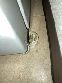 冷蔵庫の移動際に床がえぐれてしまいました 直し方とかありますか? 退去時どのぐら補修費取られますか? わかる方教えてください