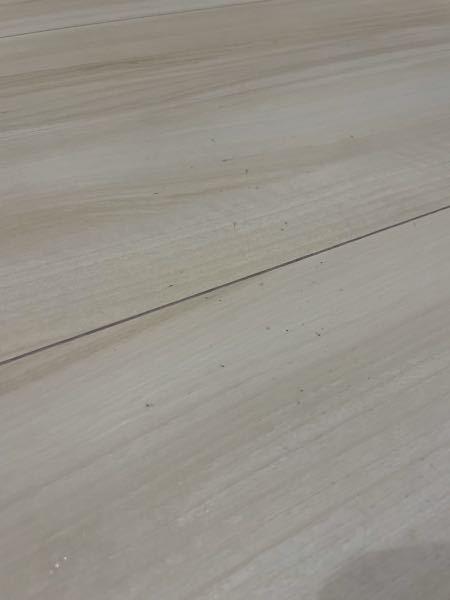 床にこのような黒い汚れがついているのですが、なんの汚れでしょうか? また、どのように掃除すれば綺麗になるでしょうか? ちなみに住み始めて3ヶ月、新築です。 鉛筆の芯を擦ったような汚れもあります。