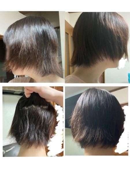 3日前に縮毛矯正をしました。 数年通っている美容院です。 もともと癖が強いのですが、 家でシャンプーして乾かしたらこんな状態です。 これはきちんとかかっているのでしょうか…?