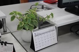 PCの横に置く観葉植物 仕事がブラックなので癒やしのグリーンを置きたいです… あまり光は当たらず、北国ですが、 小さく育てやすい観葉植物はなんでしょうか? よろしくお願いします。
