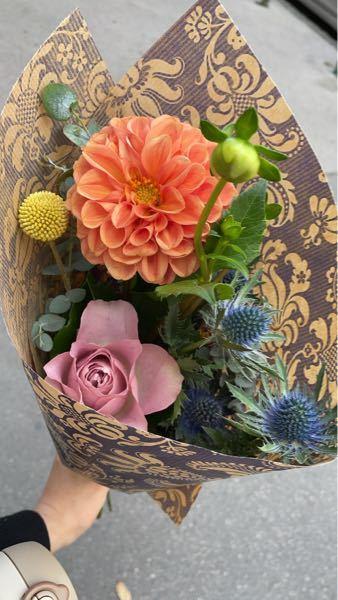 4つのお花の種類を教えてください。 ヨーロッパ在住でお花屋さんで可愛い4種類を 購入したのですが、見た目で選んだため 名前がわかりません。 もしどれがひとつでも分かれば 教えてくださると嬉しいです。 よろしくお願いします。
