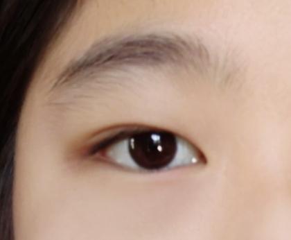 この眉毛だったら、整えた方がいいですよね?ここからだったら、綺麗に平行眉に出来ますか?(眉毛だけ撮ったら画質が悪くなったので目も一緒に撮りました) 後、小6で整えても大丈夫ですか?