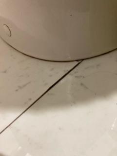 トイレのタイルのはがれについて トイレの下のタイルの端っこが少しだけ浮いてあることに気付きました。築8年です。この部分のみで、ほかはきれいです。 まだ少しだけなのですが、この場合タイル用の接着剤をつけて上から重しでもしておいたら大丈夫でしょうか。 放置してたら、このまま少しずつはげていきそうなかんじです。普段は小さな子がいて汚れそうなのでマット等は引いていませんでした。 すいませんがわかる方よろしくお願いします。