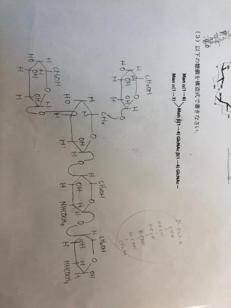 生化学についての質問です。 糖鎖についての構造式で、写真の答えで合ってますでしょか?? 確認のほどよろしくお願いいたします。