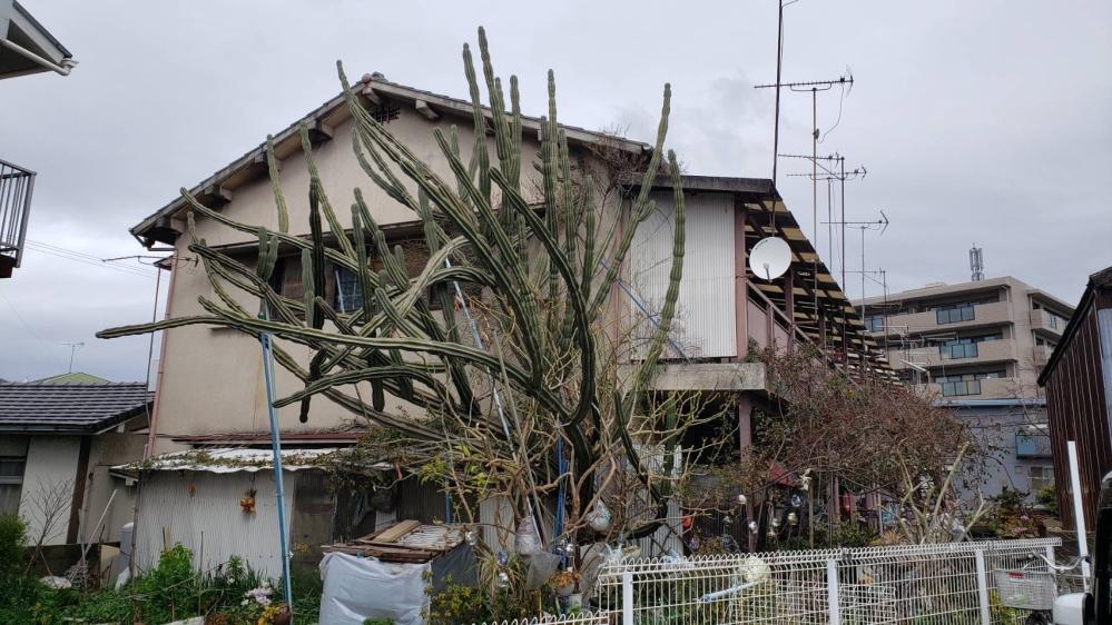 どなたかこの場所がわかる方いらっしゃいますか? 静岡県という事はわかっています。 よろしくお願いします。