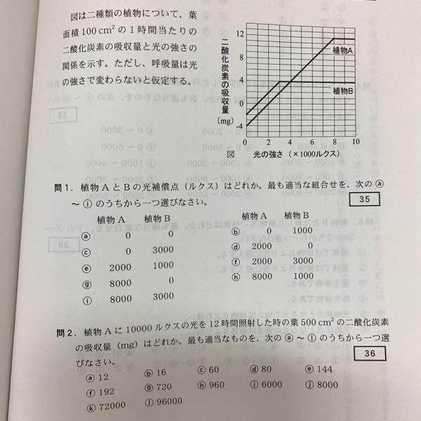 高校 生物基礎 植物の成長について 問2の答えがgの720mgなのですが、 解説お願いします(>_<)