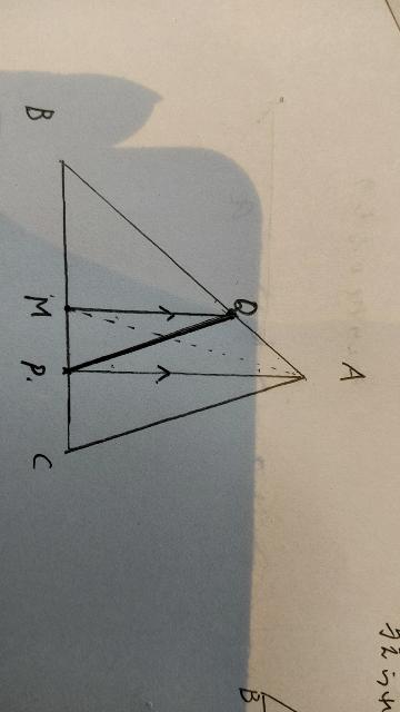 数学の問題です。「△ABCの返上の点Pを通り、面積を2等分する直線を作図せよ。」という問題なのですが、証明の仕方がわからないので、教えてほしいです。おねがいします。作図は写真のとおりです。