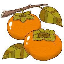柿といったら何色のイメージを思い浮かびますか?