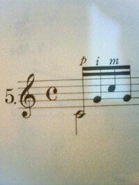 アルペジオの弾き方の違いについて? 最近クラシックギターを始めました。独学なのですが、カルカッシ教則本を使っています。今日進んだ所で初めてアルペジオの練習パターンがいくつか出て来たのですが、その中で分からないものがあったので質問させて下さい。  1)普通に16分音符が4つ並んでいるようなアルペジオ 2)最初の音符が二拍のものなのに16分音符(写真を撮ってみました)  この1)と2)...