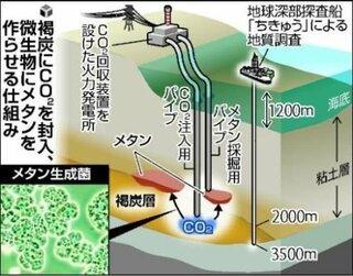 炭酸ガス,メタン生成菌,天然ガス化,ヤフージャパン,褐炭層,自然環境中,メタン生成古細菌