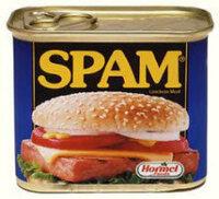 スパム ランチョンミートって生で食べられますか?母は食べられるって言ってたんですが本当ですか?