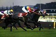 過去の名馬が獲得した賞金を現在の賞金体系に換算して賞金王を決めるとしたら、TOP10にはどんな馬がランクインするのでしょうか? スピードシンボリ?シンボリルドルフ?オグリキャップ?ハクチカラ? う~ん、あとはヒカルポーラ・シンザン・ニホンピロウイナー・テイエムオペラオー・ウォッカ・ナリタブライアンあたりだと思うのですが、皆様のご意見をお聞かせ下さい。