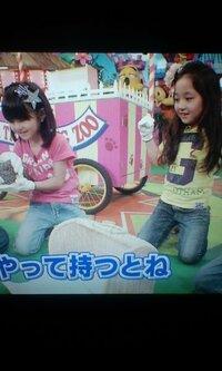 やらせ ハイジ 志村 動物園